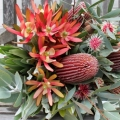 Florist Choice Native Bouquet from $40